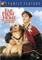 Far from Home: The Adventures of Yellow Dog picture