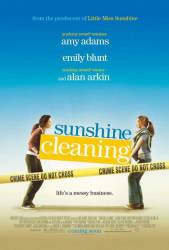 Sunshine Cleaning picture
