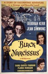 Black Narcissus picture