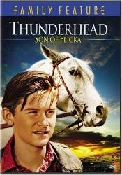 Thunderhead - Son of Flicka picture