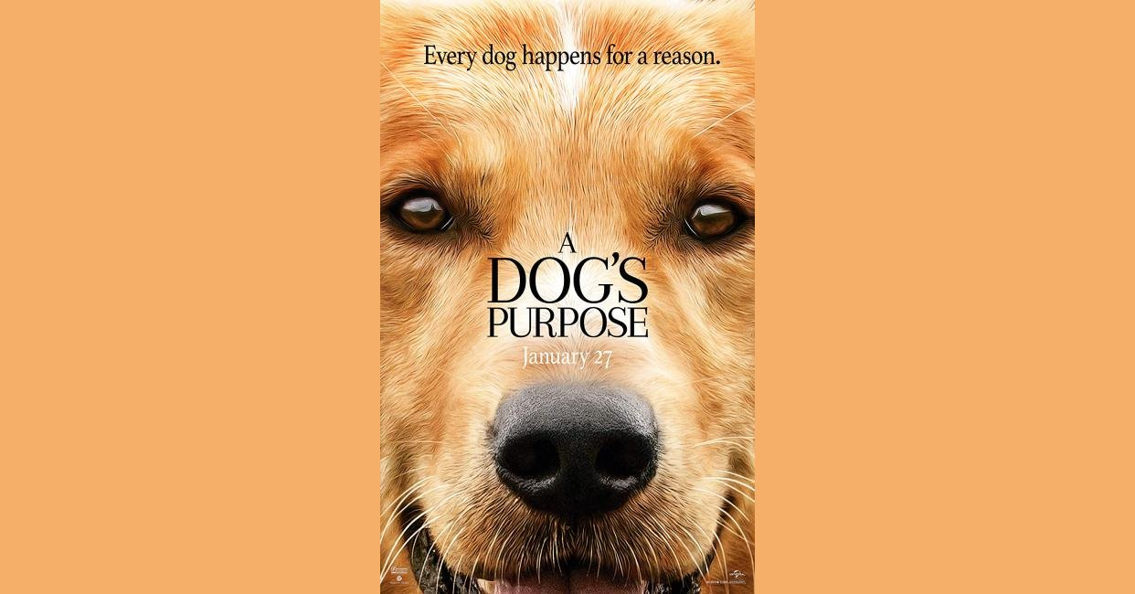 A Dog S Purpose 2017 Mistakes Quotes Trivia Questions And More