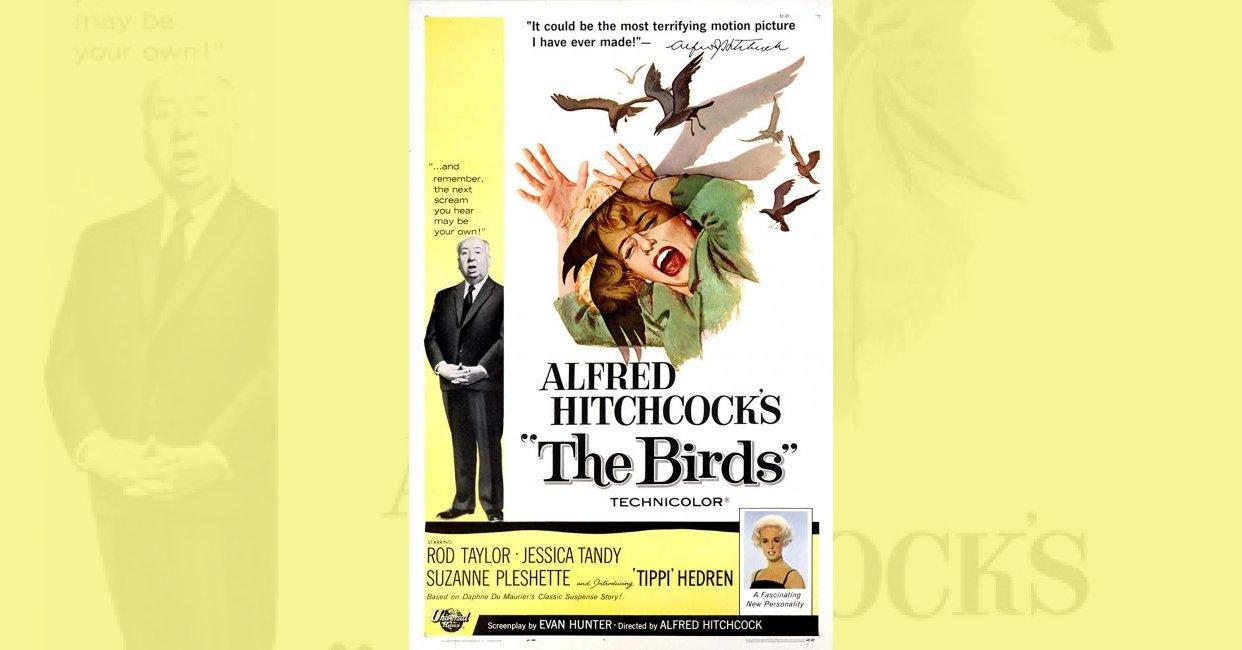 The Birds (1963) plot summary